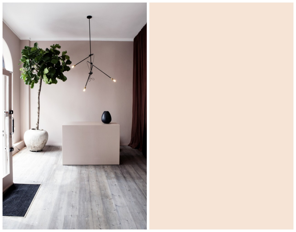 Pink Ground della Farrow and Ball